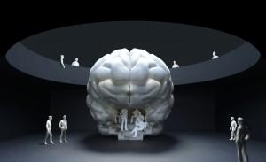 Zu Fuß unterwegs durch das Gehirn-Modell Modell: Hertie-Stiftung 2016, Alexander Grychtolik/Foto: U. Dettmar