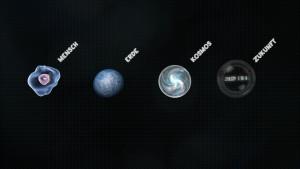 Vier neue Bereiche wird es im Neuen Museum geben: Mensch, Erde, Kosmos, Zukunft. Bild: Senckenberg