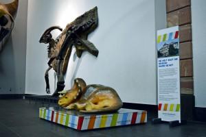 Beim dem Skelett des Iguanodons hat es sich der kleine Triceratops bequem gemacht und sammelt Spenden für die Fundraisingkampagne (Foto: Paul Brand)