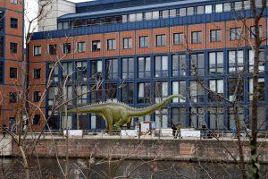 An seinem neuen Standort am Spreeufer hat der Langhalsdinosaurier richtig viel Platz