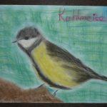 Kohlmeisen und andere heimische Vögel können Sie mit den Experten im metzlerpark bestimmen Bild der Schillerschule