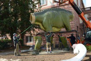 Mit dem Teleskoplader hebt das Team von Philipe Havlik den 400 kg schweren Dino-Torso vom Tieflader.