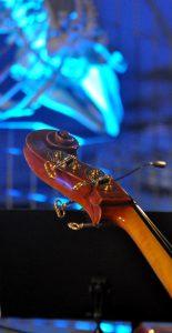 Konzert der Hochschule für Musik und Darstellende Kunst Frankfurt am Main im Saal der Wale im Senckenberg Naturmuseum Frankfurt Copyright: Björn Hadem/HfMDK